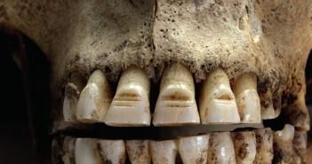 zęby wikinga